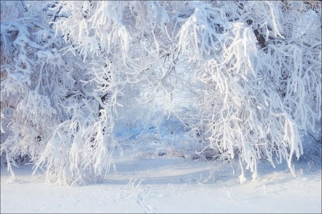 winter29