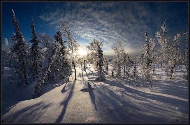 winter37