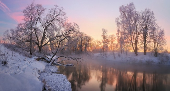 winter44