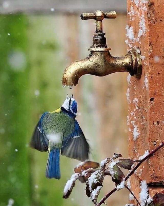 water-effort